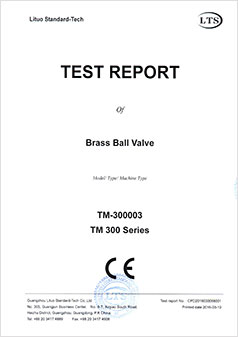 Ball Valve Test Report