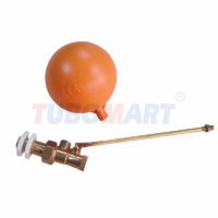Float Valve Assembly